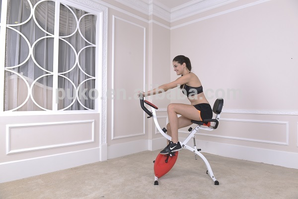 velo exercice a vendre muscu maison. Black Bedroom Furniture Sets. Home Design Ideas