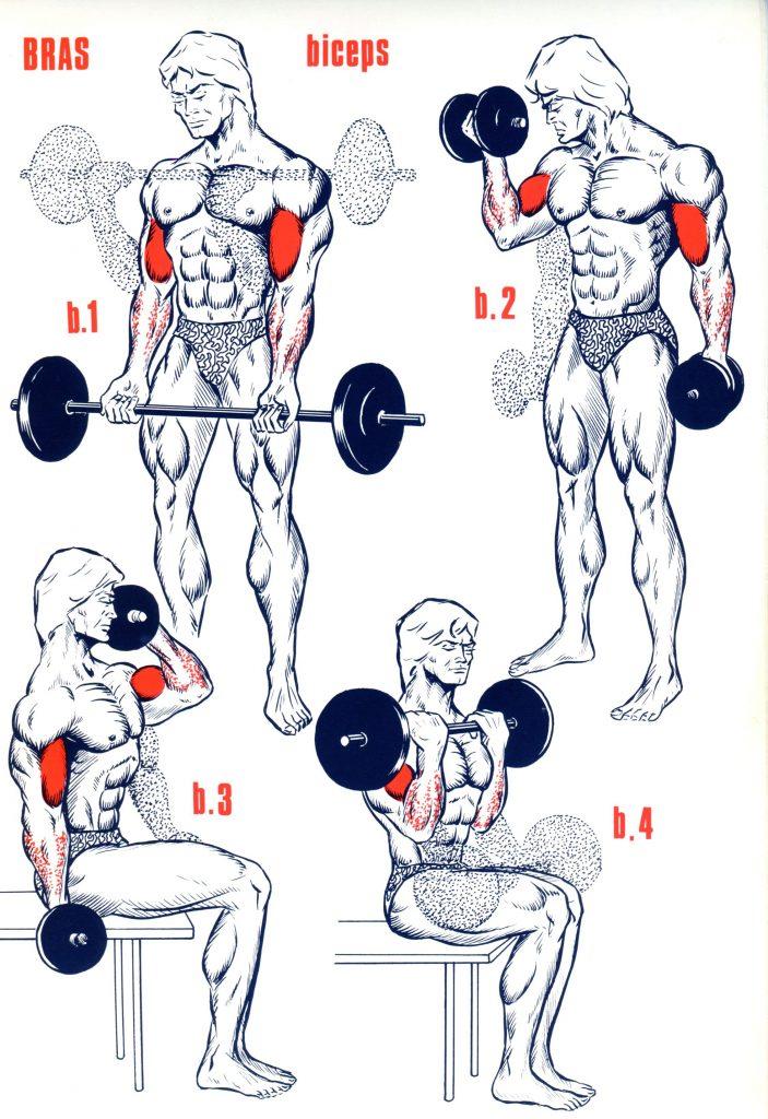 Exercice musculation - Muscu maison