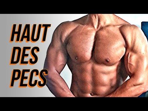 Quels exercices pour muscler mes obliques  ALL MUSCULATION