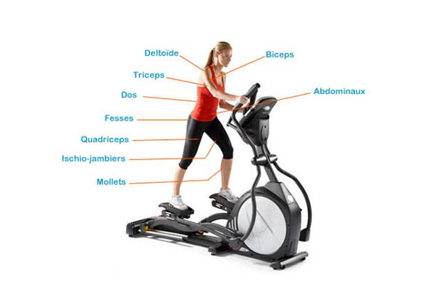 Velo elliptique que fait il travailler muscu maison - Velo elliptique ou tapis de course pour maigrir ...