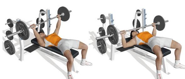 Travailler les pectoraux muscu maison - Appareil musculation developpe couche ...