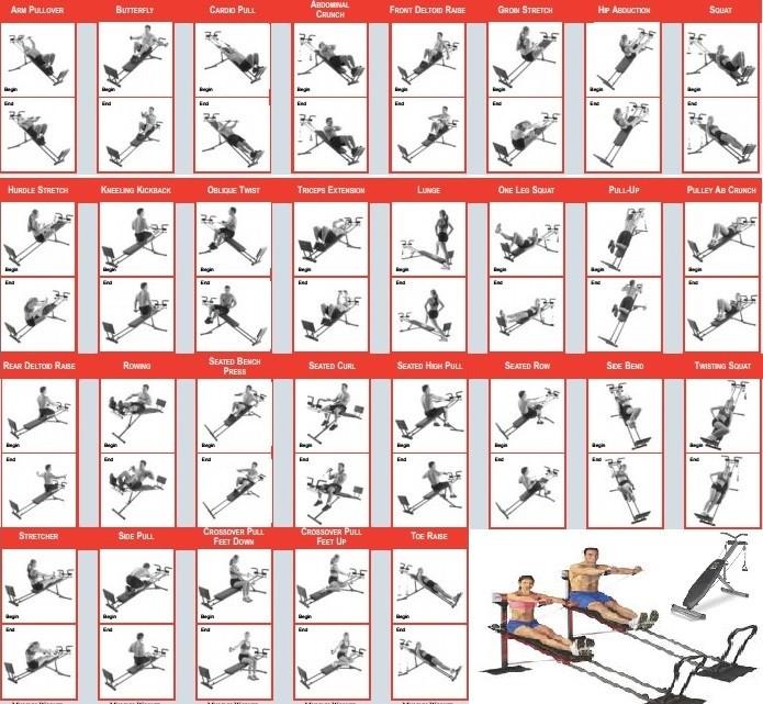 Appareils musculation auteur sur muscu maison page 44 for Portique traction exterieur